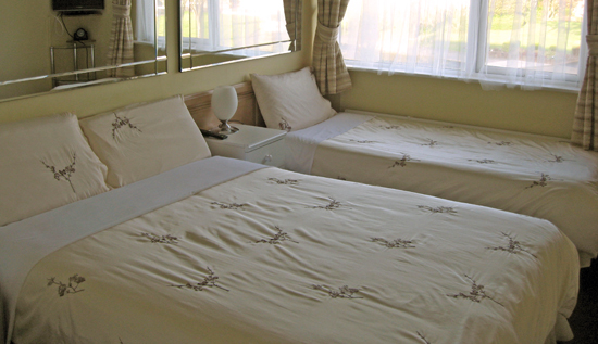 One Standard Twin/Double room with private bathroom